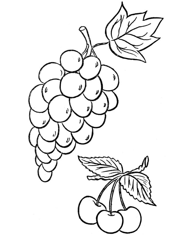 Grape vines, Thanksgiving dinners and Coloring pages on