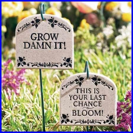 315 Best Images About Garden Signs & Quotes On Pinterest Garden