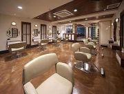 color schemes hair salons