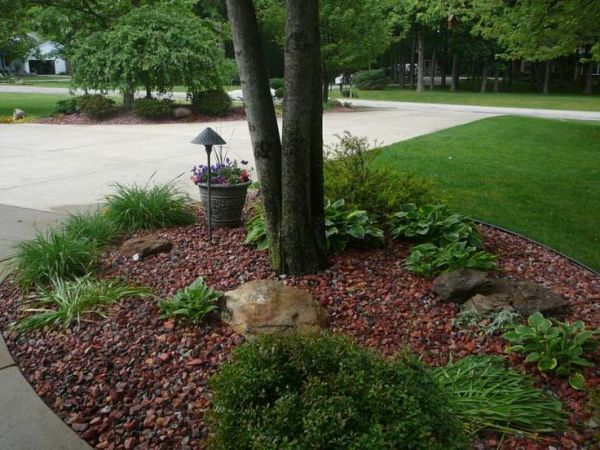 landscaping design tree