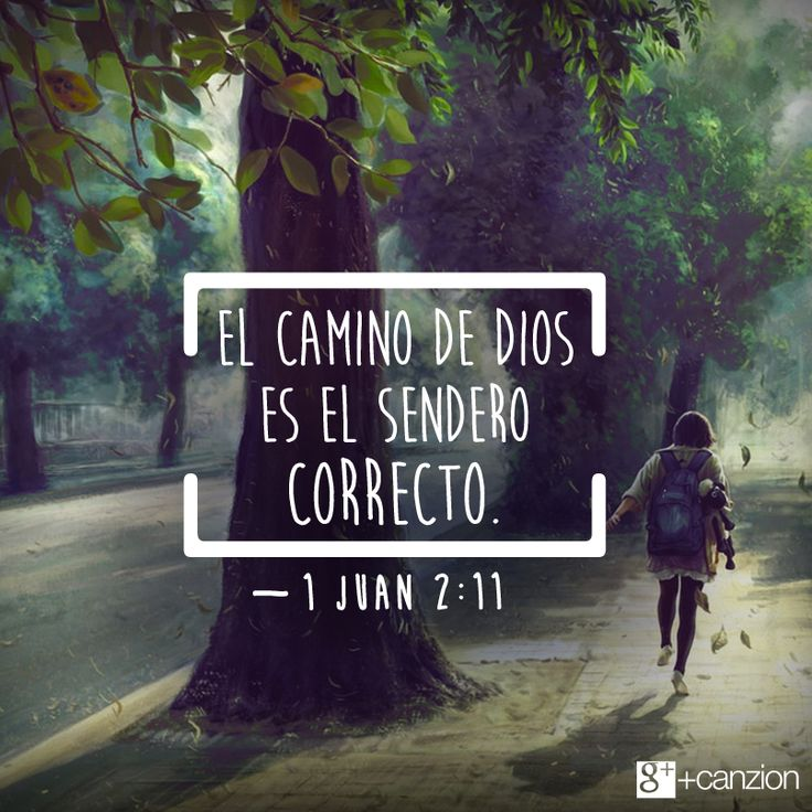Odia Quotes Wallpaper 17 Best Images About Caminando Con Dios On Pinterest Tes