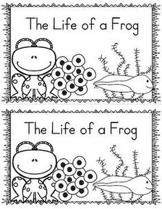 Emergent readers, Life cycles and Frogs on Pinterest