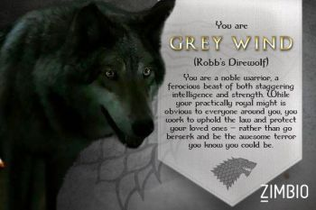 Grey wind game of thrones