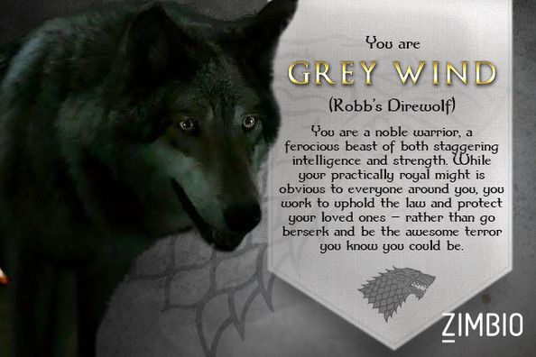 Grey wind game of thrones