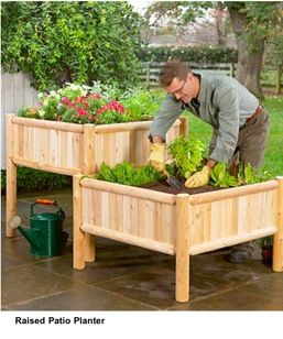 534 Best Images About Container Vegetable Gardening On Pinterest