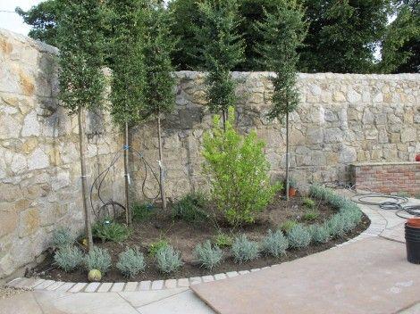 7 Best Images About Garden Screening Ideas On Pinterest Gardens