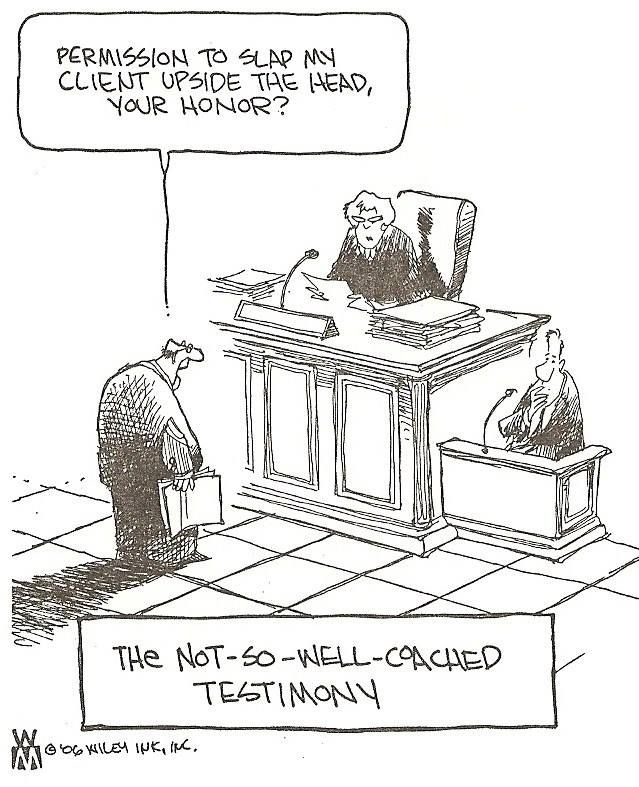 623 best Lawyer Cartoons images on Pinterest