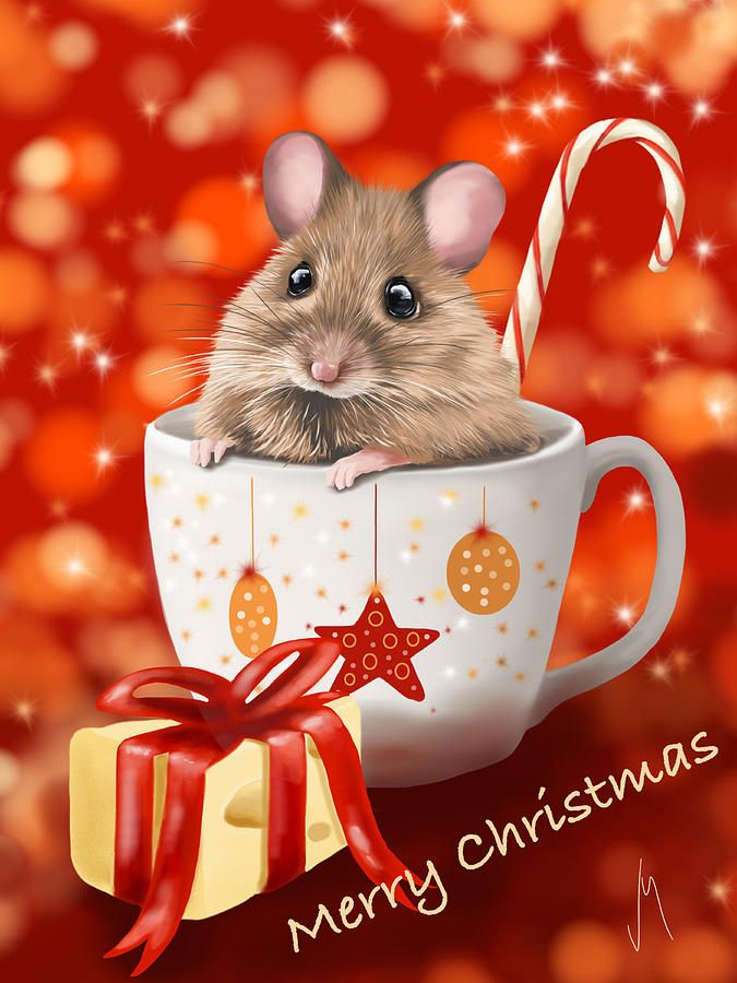 900 Best Images About I CHRISTMAS MICE On Pinterest