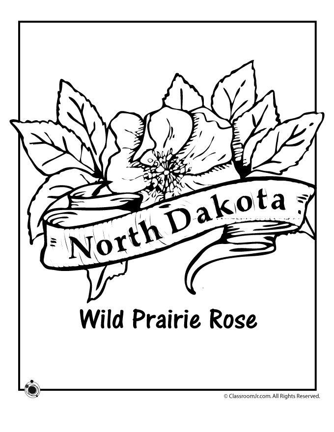32 Best images about SS ~ North Dakota on Pinterest