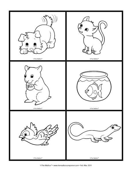 211 best images about Tema: Las mascotas on Pinterest