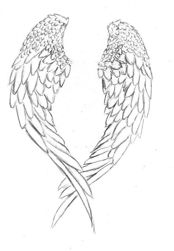 Best 25 Bird Skull Tattoo Ideas