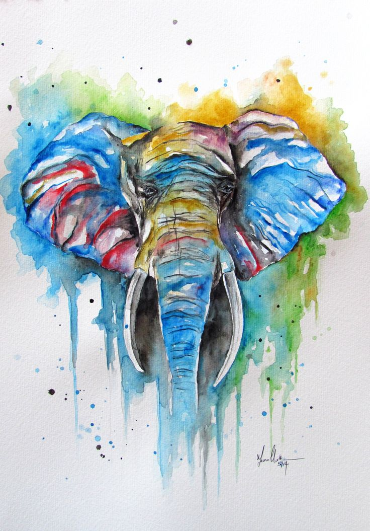 Rottweiler Fall Wallpaper Colourful African Elephant Watercolour Watercolor Fiona