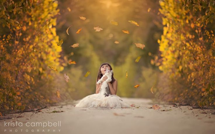 What Is Falling Action Of The Yellow Wallpaper 5 Secrets To Amazing Fall Photos Overlays Blog And Photos