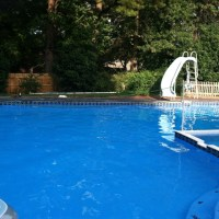 37 best images about pool shape ideas on Pinterest ...
