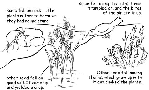 83 best images about Bible Sower and the Seed on Pinterest