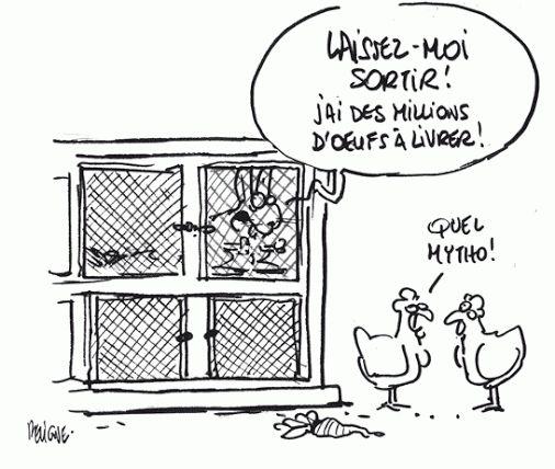 910 best images about FLE : humour en français on