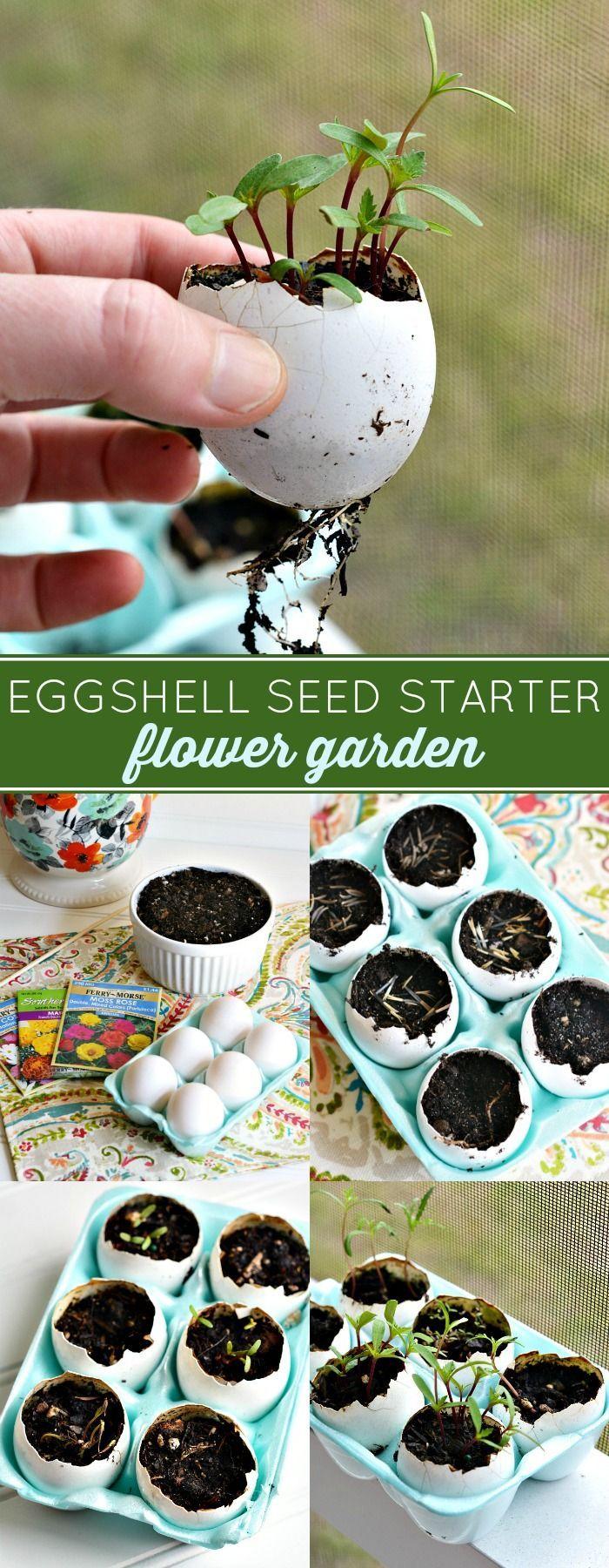 25 Best Ideas About Garden Club On Pinterest Gardening Clubbed