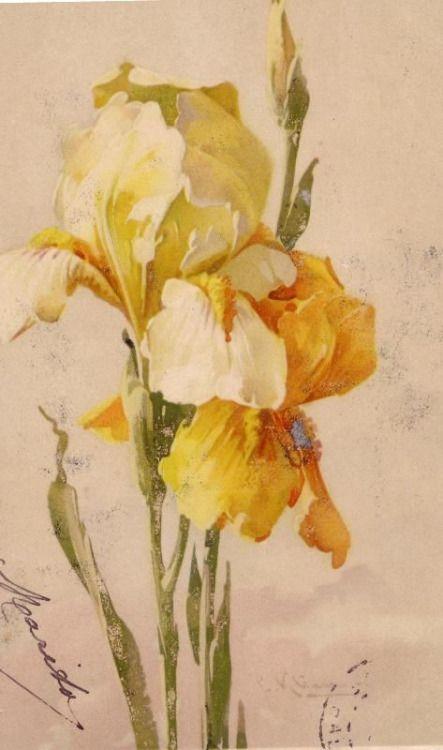 558 Best Artist Catherine Klein Images On Pinterest
