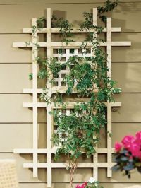 17 Best images about Trellis Design Ideas on Pinterest ...