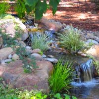 36 best images about NW LANDSCAPING on Pinterest | Gardens ...