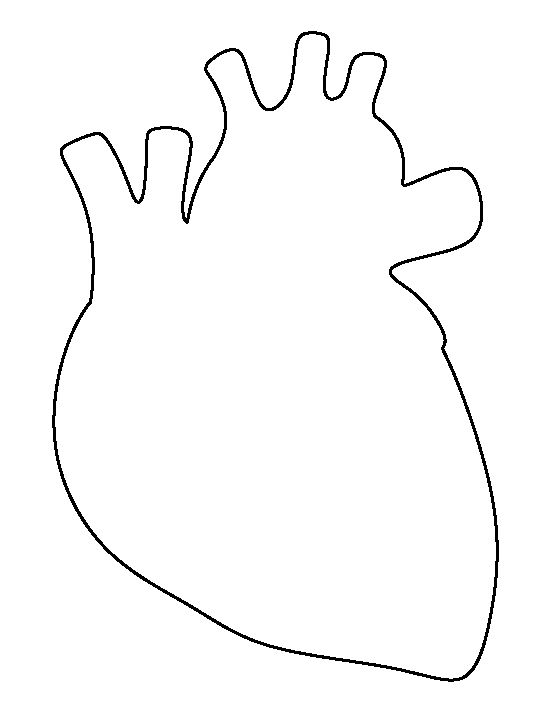 Human heart pattern. Use the printable outline for crafts