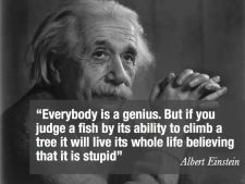 Everyone is a genius