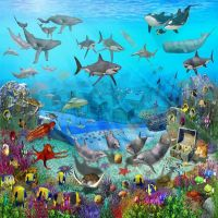 under the sea wall murals | Colorful Childrens Wallpaper ...