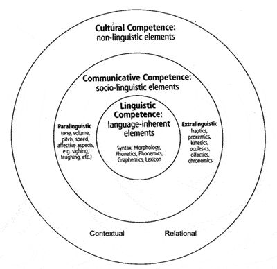 25+ best ideas about Cultural competence on Pinterest
