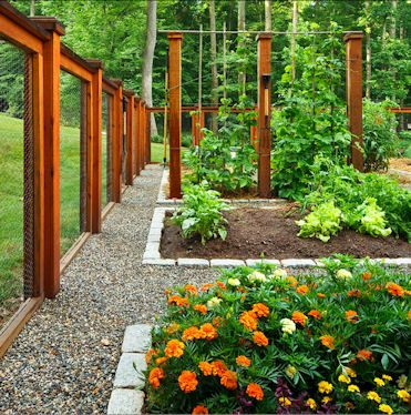25 Best Ideas About Garden Fences On Pinterest Fence Garden