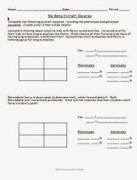 Big Bang Theory Punnett Square Worksheet | LLC Middle ...