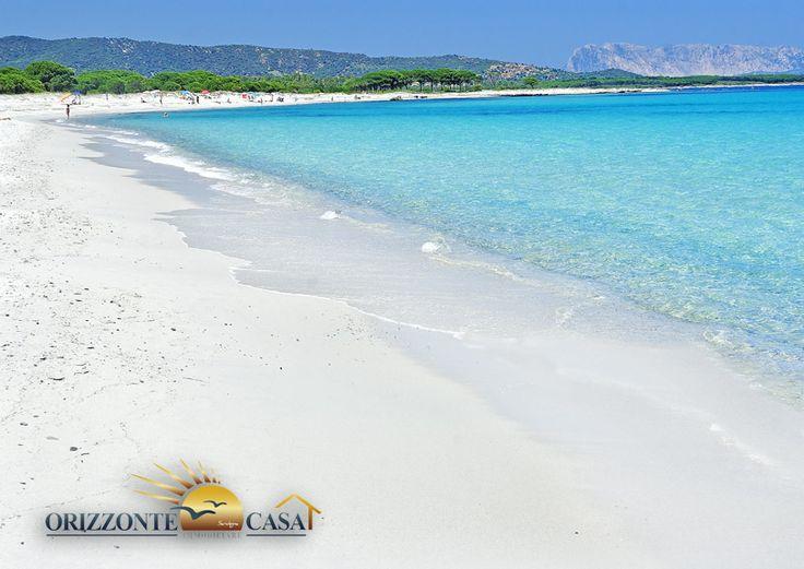 Spiaggia di Budoni  Spiagge in Sardegna  Beaches Sardinia  Pinterest