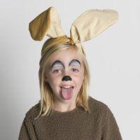 25+ best ideas about Donkey costume on Pinterest   Shrek ...