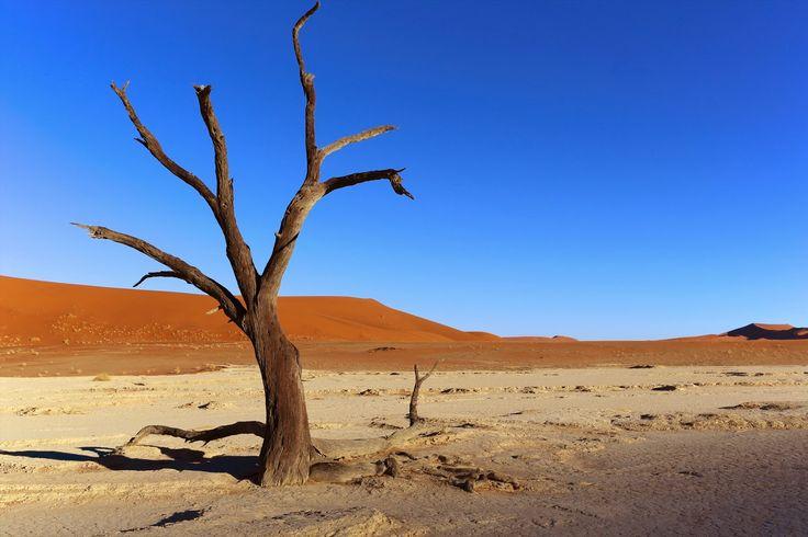 Bb 8 Cute Wallpaper صحراء قاحلة خلفيات خلفية عالية الدقة Ogtdhj خلفيات Hd