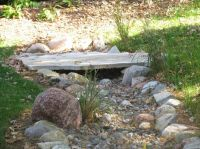 17 Best images about Backyard Landscaping on Pinterest ...