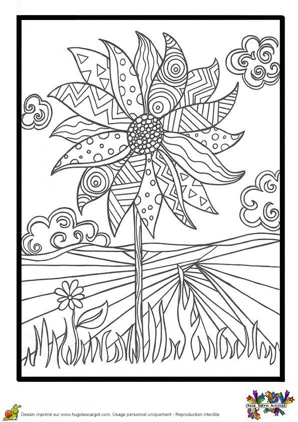 395 best images about Floral Coloring Pages for Adults on