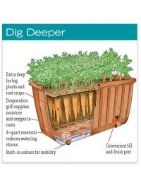 25+ best ideas about Self watering planter on Pinterest ...