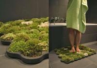 pflanzen moos badematte   Wohnung   Pinterest   Garten und ...