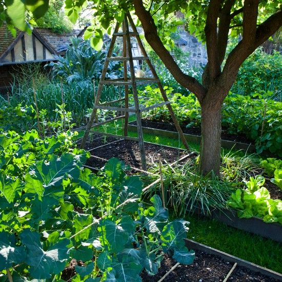 100 Ideas To Try About Add To Garden Gardens Root Cellar And