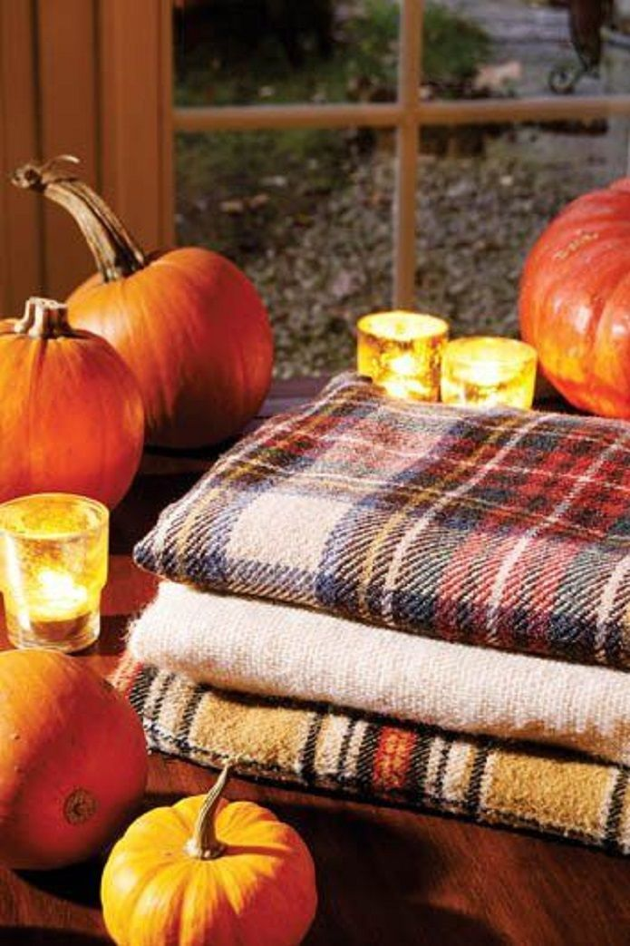 Pumpkins And Fall Leaves Wallpaper Pumpkins And Plaid Blankets Must Be Fall 1 From