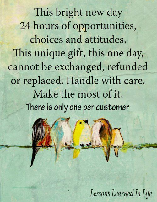 This Bright New Day 24 Hours Of Opportunities, Choices