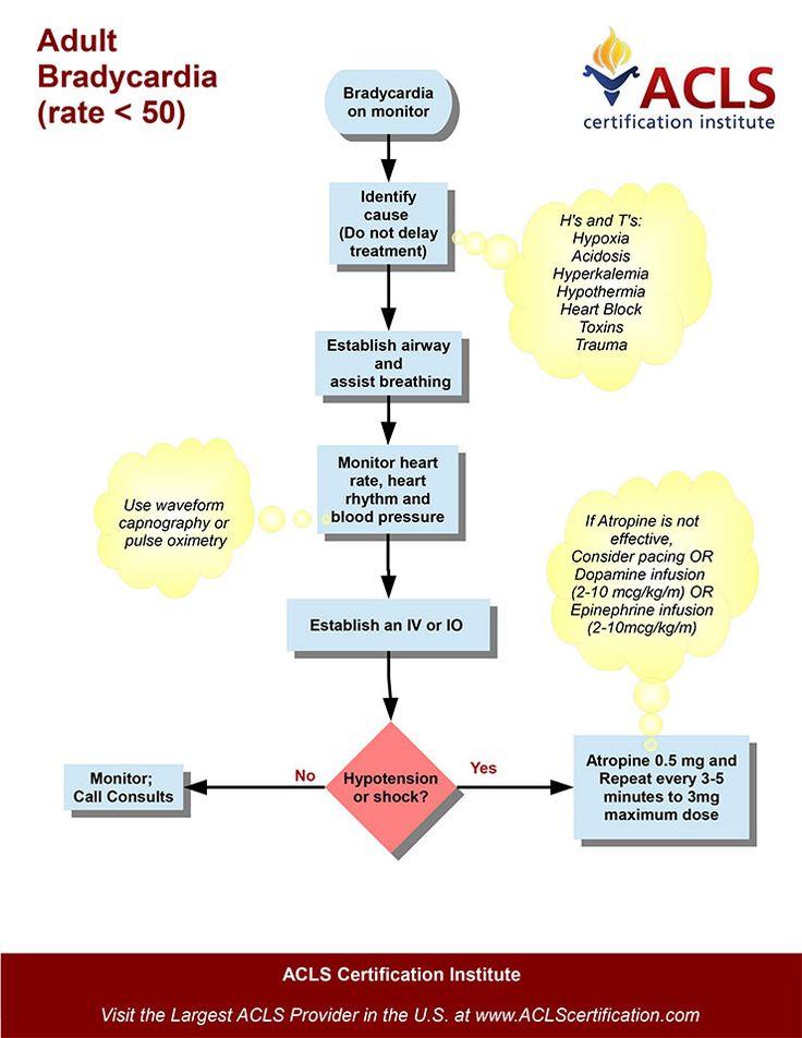 Acute Adult Bradycardia (with pulse) algorithm by the ACLS ...