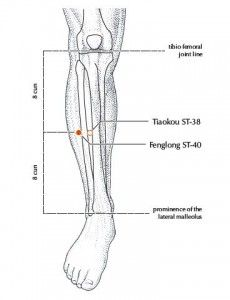 17 Best images about Acupuncture Points on Pinterest