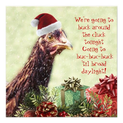 Chicken Christmas Funny Chicken Farm Funnies Amp Quotes Pinterest Funny Christmas And Chicken
