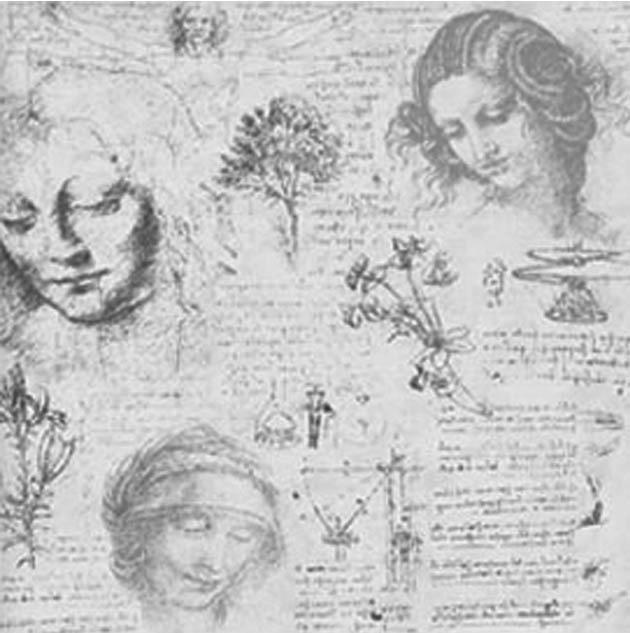 231 best images about Leonardo Da Vinci on Pinterest