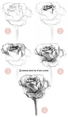 Top 25 ideas about Pencil Drawing Tutorials on Pinterest