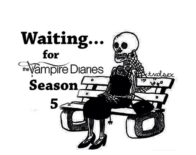 3306 best images about TheVampireDiaries! on Pinterest