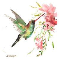 25+ best ideas about Watercolor hummingbird on Pinterest ...