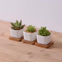 25+ best ideas about Rectangular planters on Pinterest ...