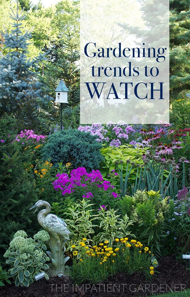 261 Best Images About Spring Gardening Ideas On Pinterest