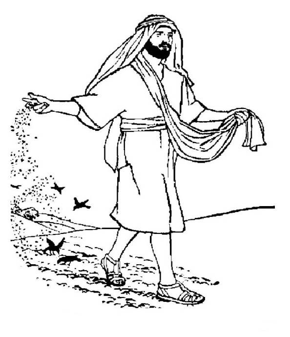 99 best Parable of Sower and the Seed images on Pinterest
